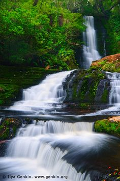 Upper McLean Falls, The Catlins, South Island, New Zealand. McLean Falls is a…