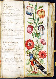 A bound collection of vellum sheets illuminated with original bodycolour paintings on 28 panels, the vellum sheets originally forming two continuous manuscript rolls, both relating to the De La Broye family, attested to by J. Medieval Books, Medieval Art, Spanish Netherlands, Engraving Printing, Historical Artifacts, Nature Images, Art Journal Inspiration, Illuminated Manuscript, Fabric Paper