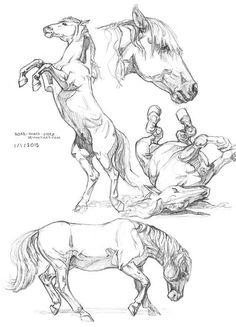 cute animals to draw Blake Alexander Downing Fantasy Illustration - Sonia Valojitch - Zeichnen - Horse Drawings, Animal Drawings, Art Drawings, Drawing Animals, Fantasy Drawings, Painted Horses, Animal Sketches, Drawing Sketches, Sketches Of Horses