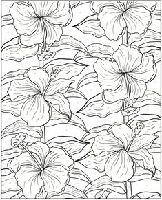 Welcome to Dover Publications - Creative Haven Floral Design Color by Number Coloring Book / artwork by Jessica Mazurkiewicz