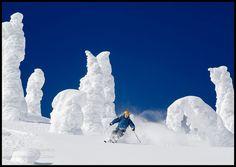 024a370a276d7 87 Best Ski images