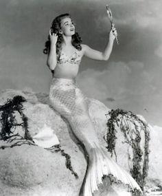 McAuliffe crest is three mermaids combing their hair. Mermaids as banshee  (bean sidhe)
