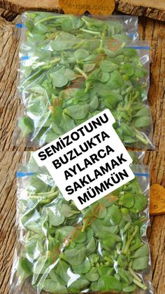Food Preparation, How To Dry Basil, Have Fun, Food And Drink, Herbs, Vegetables, Drinks, Cooking, Recipes