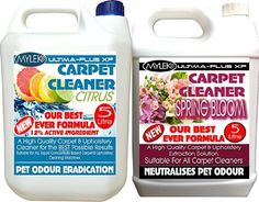 Loading... Best Carpet Cleaning ...