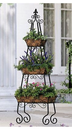 Vertical garden- would be great for annual herbs right outside the kitchen.