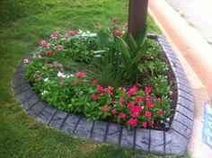 Mailbox flowers! Make it rockin! It is amazing how much more you love your home when you make the outside colorful. #InvitationHomes