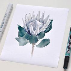 watercolour Sketch Book, Lovers Art, Flower Art, Diy Artwork, Marker Art, Painting Crafts, Iphone Drawing, Flower Sketches, Botanical Watercolor
