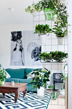 Indoor Vertical Garden Plant Ideas 15 Indoor Garden Ideas For Wannabe Gardeners In Small Spaces inside ucwords] Cozy Living Rooms, Living Spaces, Small Space Living Room, Small Living, Room Divider Diy, Room Dividers, Divider Ideas, Divider Design, Diy Wall Planter