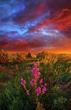 A Wisconsin Story Photograph by Phil Koch