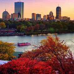 Thanks for sharing @o_annie_o! Boston skyline. #fall #bostonusa #boston www.bostonusa.com www.instagram.com/visitboston