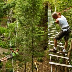 TreeGO is an adult/youth aerial adventure, challenging and exhilarating, as you… New Brunswick Tourism, New Brunswick Canada, Vacation Destinations, Dream Vacations, Ropes Course, Win A Trip, Prince Edward Island, Gap Year, Canada Travel