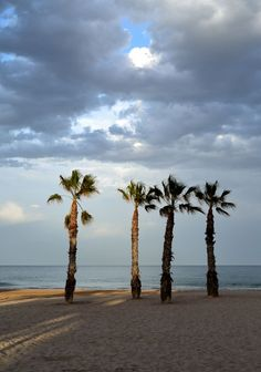 San Joan Alacant San Juan Alicante, Beach, Water, Outdoor, Places To Visit, Scenery, Heavens, The Beach, Seaside
