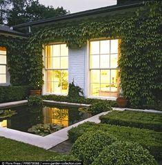 Estanque formales Contemporáneo y topiary porción leticia