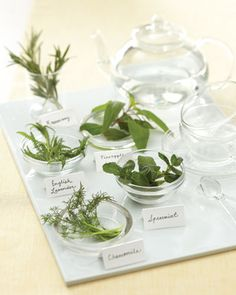 A self-serve tea station with fresh herbs for an after-dinner refreshment
