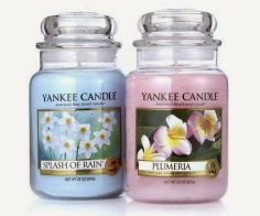 Yankee candles, Jar candles and Caribbean on Pinterest