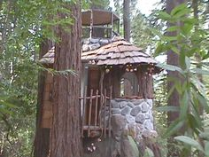 114 best trees tiny houses treehouses images cool tree houses rh pinterest com