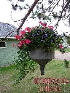 Found this idea in Flea Market Garden magazine!!! Bebe'!!! Old tin funnel makes a perfect planter for this container garden!!! Love the trailing vines!!!