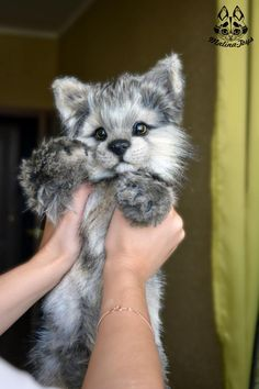 Handmade Poseable Wolf Cub commission by MalinaToys on DeviantArt Felt Animals, Animals And Pets, Funny Animals, Safari Animals, Animals Images, Cute Fantasy Creatures, Cute Creatures, Cute Little Animals, Cute Animal Pictures