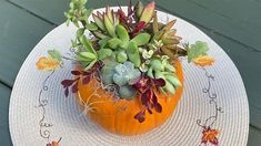 In this video, learn all the steps to make your own succulent pumpkin decoration. Spring Flowering Bulbs, Pumpkin Stem, Changing Leaves, Fine Gardening, To Spoil, Floral Pins, Diy Garden Projects, Planting Bulbs, Autumn Garden