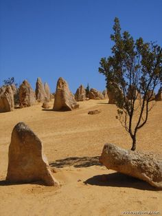 Pinnacles desert, Perth, Australia