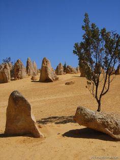 Image detail for -Decierto – Perth, Australia : Turismo de Oceania