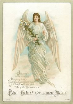 TUCK DB-angel holds flower stem in her right hand
