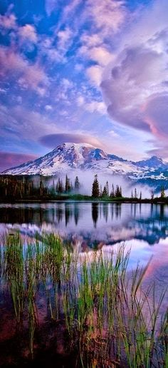 Reflections of Mt. Rainier, state of Washington.