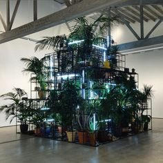 Rashid Johnson - Islands