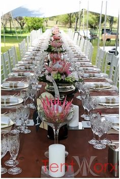 Tentworx tent hiring offers affordable reliable tent hire, peg and pole marquee hire, frame tent hire and bedouin tent or free form tent hire. Wedding Table Decorations, Wedding Themes, Wedding Centerpieces, Centrepieces, Protea Centerpiece, Wedding Ideas, Tropical Centerpieces, Flor Protea, Protea Flower