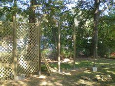 Expert Advice For Building A Lattice Trellis In Your Garden