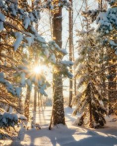 Beautiful Winter Pictures, Winter Photos, Pretty Pictures, Pictures Of The Sun, Sunset Pictures, Nature Pictures, Winter Landscape, Landscape Photos, Winter Photography
