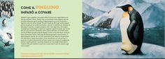"""#unfakedialberto's book for kids """"Storie di animali"""