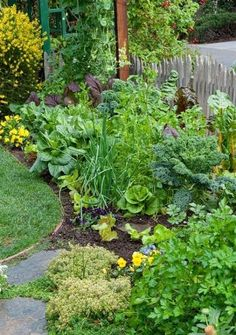 Beautiful Yet Practical Vegetable Garden Designs