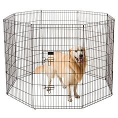Ollieroo Dog Playpen Exercise Pen Cat Fence Pet Outdoor Indoor Cage 8 Panel Black E-Coat Small W x H) - Dog Store Probiotics For Dogs, Cat Playpen, Indestructable Dog Bed, Cat Fence, Cat Exercise, Wireless Dog Fence, Puppy Pads, Dog Shock Collar, Cat Cages