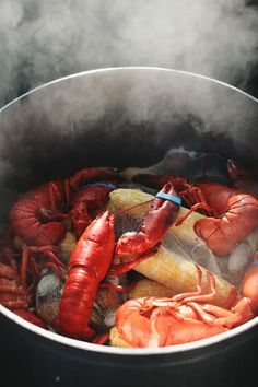 lobster cook-out