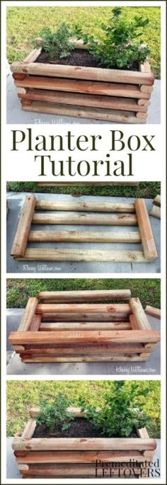 DIY Planter Box Tutorial  - perfect for growing berries and other fruit plants on your patio