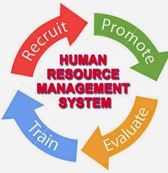 EmployWise is a Human Resource Management System that is quick to deploy, easy to use and very Affordable. Human Resource Management System, Hr Management, Consulting Firms, Life Cycles, Human Resources, Sewing Hacks, Good Things, Software, Frame