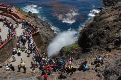 El ecoturismo en la Bufadora de Ensenada - http://revista.pricetravel.com.mx/ecoturismo/2015/05/24/el-ecoturismo-en-la-bufadora-de-ensenada/