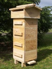 Beekeeping—10 Reasons to Raise Your Own Bees http://thenaturallivingsite.com/blog/2011/03/beekeeping10-reasons-to-raise-your-own-bees/