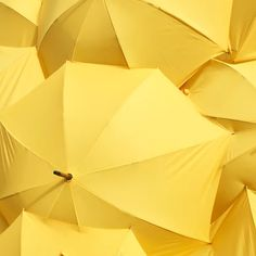 750+ Yellow Pictures | Download Free Images & Stock Photos on Unsplash