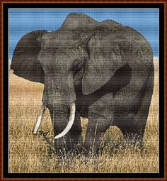 AFRICAN ELEPHANT Cross Stitch Chart ( pattern )