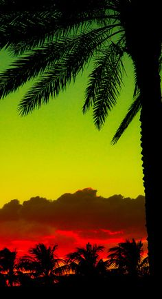 Miami sunset by Lenox Images, via Flickr