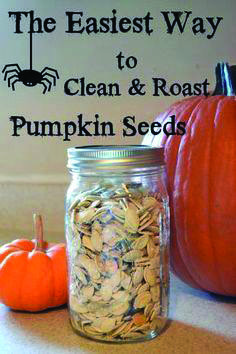 With every jack-o-lantern comes an excess of pumpkin seeds. Flour On My Face has easy instructions to clean and roast pumpkin seeds. It's a simple, tasty snack for the fall season! Roasted Pumpkin Seeds, Roast Pumpkin, Baked Pumpkin, Pumpkin Recipes, Fall Recipes, Pumpkin Carving, Holiday Recipes, Snack Recipes, Cooking Recipes