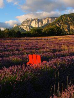 un fauteuil Adirondack rouge planté dans les lavandes au pied des roches du Vercors, vous êtes dans la photo !