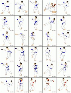 Learn different throws for martial arts in Honolulu, Hawaii. SmartKarate offers different types of belts and thats great, you will learn how to defend yourself. Repinned by @perkamperin