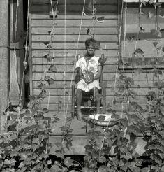 "I Am The Vine --- June 1938. ""Butter bean vines across the porch. Negro quarter in Memphis, Tennessee."""
