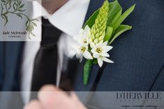 chincherinchee, foliage and ribbon grass buttonhole www.jademcntoshflowers.com.au www.tanyadhervillephotography.com