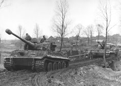 alk about the condition of weapons and equipment, as well as the condition of the roads ― insofar as one can speak of roads at all ― can be seen in the pictures. These photographs were taken in mid November 1943 when Leibstandarte Division, part XXXXVIII Panzer Corps, assembled near the town of Fastiv, which at that time was located on the left flank of the Soviet incursion into the German lines, to provide the heavy armoured punch for the counteroffensive being planned by Manstein.