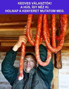 Lol, Memes, Funny, Budapest, Meme, Funny Parenting, Hilarious, Fun, Humor