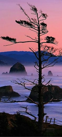 Haystack Rock at Dusk - Cannon Beach, Oregon